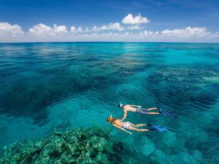 Green Island & Reef Tour - Snorkelling